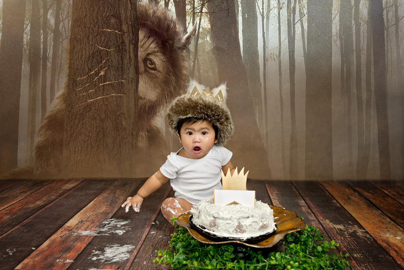 A Wild One Cake Smash Milestone Session image from Tanis Saucier Photography in Montreal, Quebec. www.tanissaucier.com #montrealmilestonesession #montrealchildrenphotographer #montrealchildrensstudio