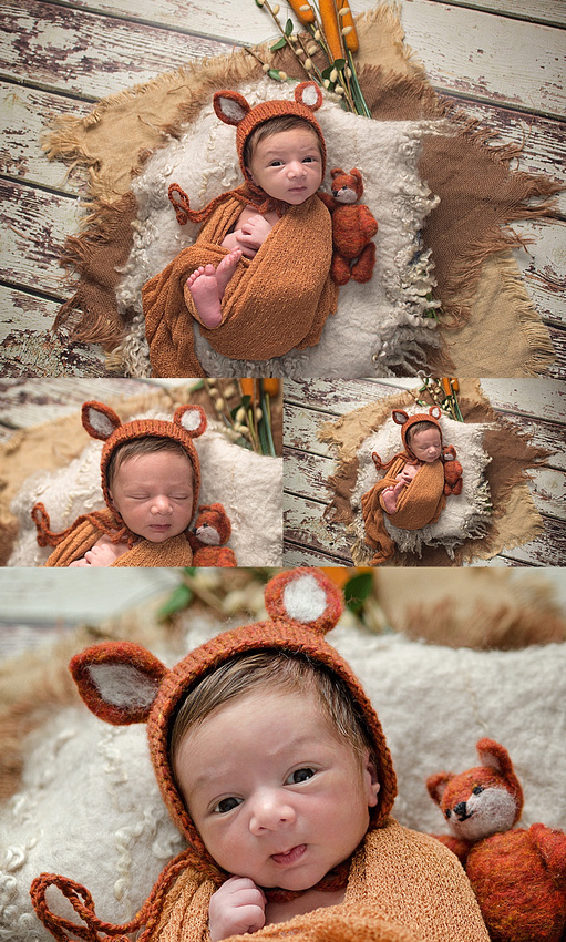 a newborn baby boy is swaddled and dressed in a fox bonnet with matching fox stuffy and posed in a basket during his newborn photography studio session in montreal with tanis saucier photography.