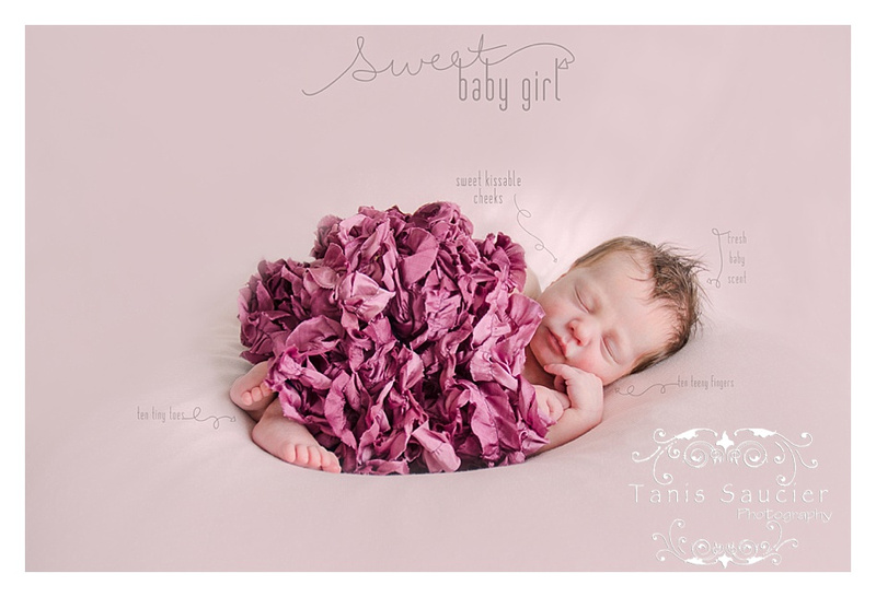 A lovely image of a 9 day old newborn baby girl sleeping peacefully while wearing a frilly rose wrap during her newborn portrait session with Tanis Saucier Photography