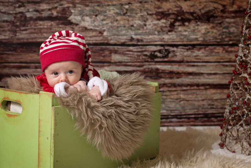 a sweet one year old boy sits on a brown fur rug during his holiday photo session with Tanis Saucier Photography in Montreal
