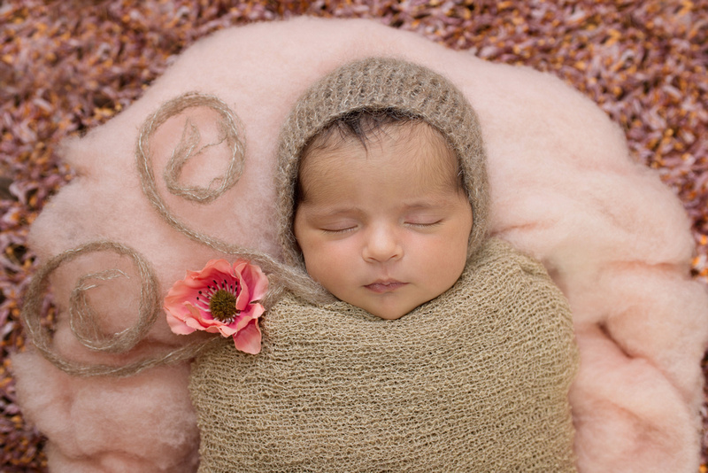 Tanis saucier photography newborn baby girl portrait session