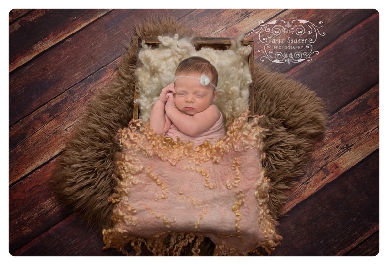 An adorable 2 weeks newborn baby girl sleeps in a little fluff filled bed