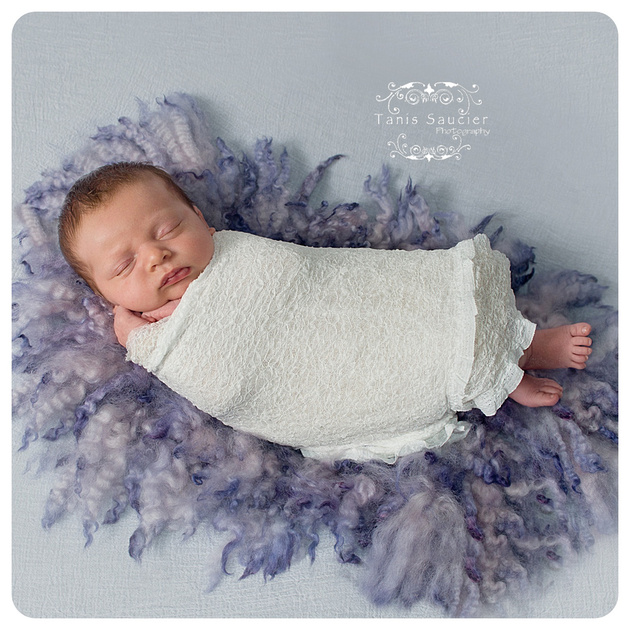 A sweet, sleeping baby girl swaddled in a delicate white wrap on a curly purple felted fur rug during her newborn portrait session in Montreal with Tanis Saucier Photography.