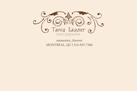 Logo Header for Tanis Saucier Photography website